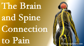 Manchester Chiropractic & Sports Injuries looks at the connection between the brain and spine in back pain patients to better help them find pain relief.