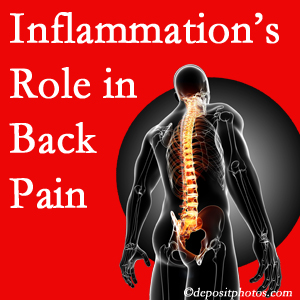 The role of inflammation in Manchester back pain is real. Chiropractic care can help.
