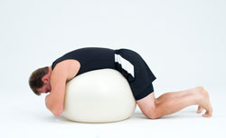 Low back stability ball exercise