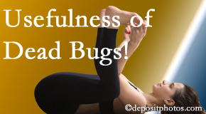 Manchester Chiropractic & Sports Injuries finds dead bugs quite useful in the healing process of Manchester back pain for many chiropractic patients.